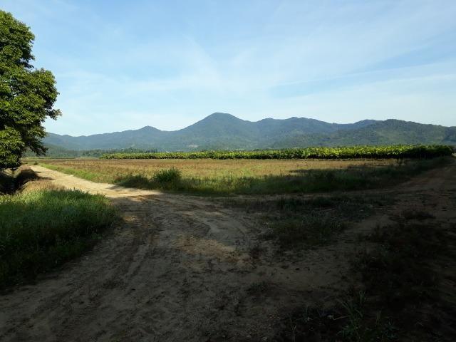 Fazenda Plana em Itapoá com Valor de Ocasião, Aceita parte em Permuta - Foto 20