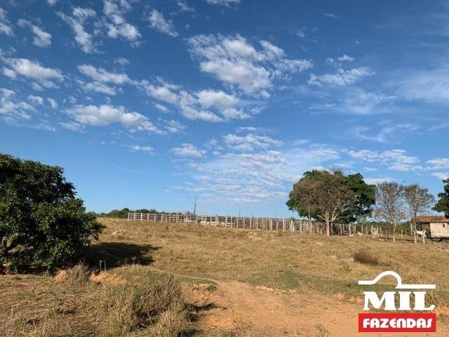 4 km de margens do Rio Araguaia. Fazenda 96 alqueires 464.64 Hectares - Aragarças-GO - Foto 19