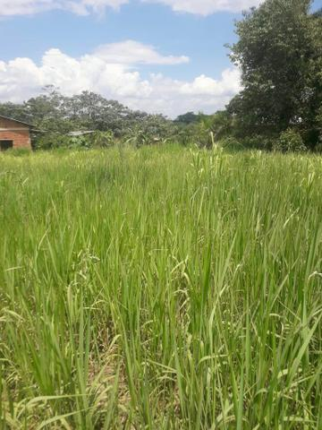 Terreno Bom e barato - Foto 3