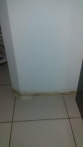 Vendo geladeira continental frost free - Foto 5