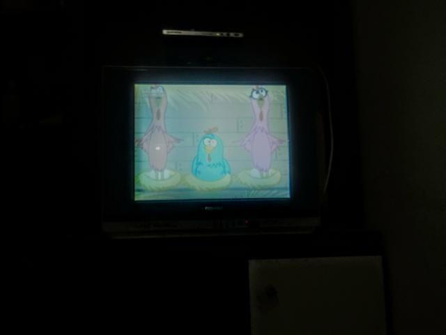 Vendo uma tv de tubo com converso mais sem a antena - Foto 2