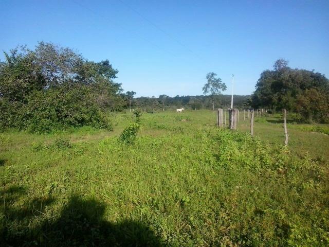 Fazenda georreferenciada 2600 hect Bonito de Minas, MG - Foto 4