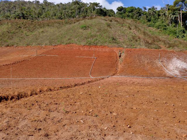 Sítio São Bento uraina 4 alqueires - Foto 6
