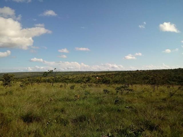 Fazendinha 30.000 mil m2, ótima localização em Três Marias. - Foto 6