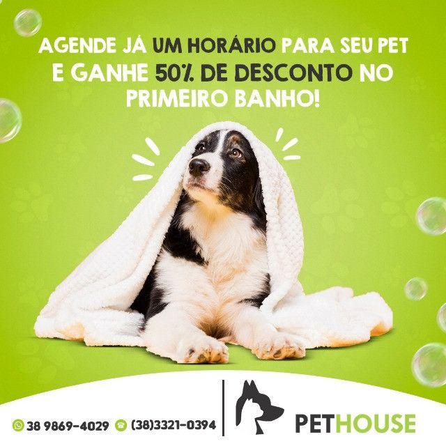 PetHouse - Primeiro banho com 50% de desconto! - Foto 2