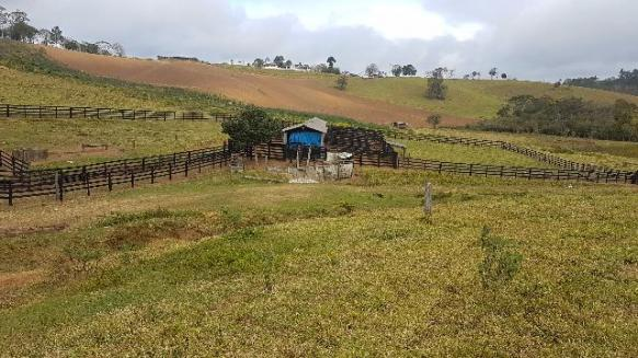 Itapetininga Região Fazenda 100 Alqueires - Foto 15