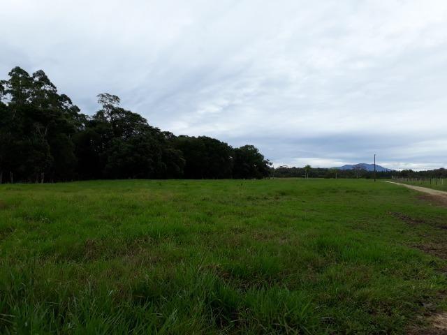 Fazenda Plana em Itapoá com Valor de Ocasião, Aceita parte em Permuta - Foto 16