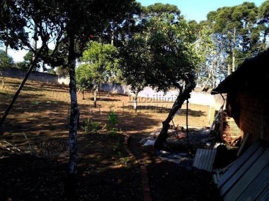 TERRENO no bairro São Braz - 19 - Foto 6