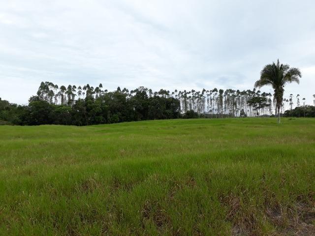 Fazenda Plana em Itapoá com Valor de Ocasião, Aceita parte em Permuta - Foto 17