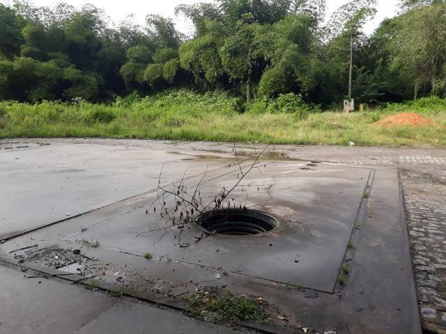 Terreno 5 hectares 100% plano px. do centro de Jaboatão velho - Foto 2