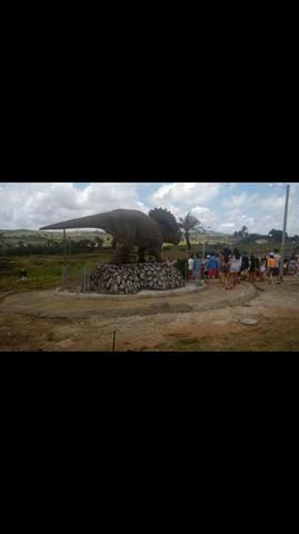 Condomínio Fechado de Chácaras Vale das Garças- 12km de Arapiraca - Foto 6