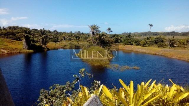 Terreno à venda em Taipu de fora, Maraú cod:57863649 - Foto 2