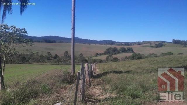 Fazenda para Plantio e Pastagem em Santa Terezinha - Foto 15