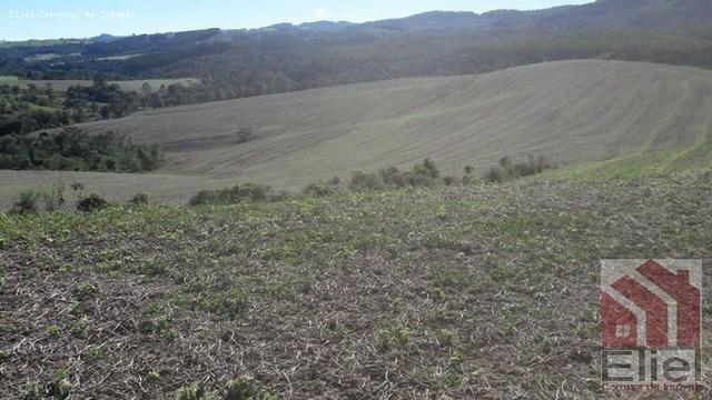Fazenda para Plantio e Pastagem em Santa Terezinha - Foto 11