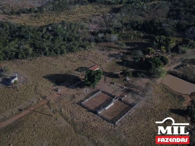 4 km de margens do Rio Araguaia. Fazenda 96 alqueires 464.64 Hectares - Aragarças-GO - Foto 14