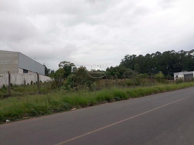 Terreno à venda em Distrito industrial, Cachoeirinha cod:2575 - Foto 3