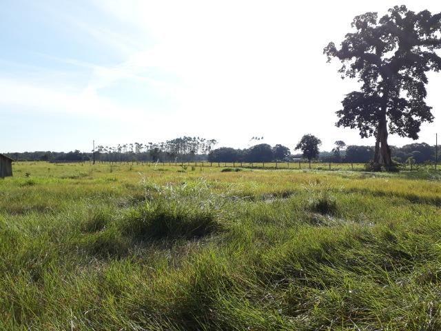 Fazenda Plana em Itapoá com Valor de Ocasião, Aceita parte em Permuta - Foto 14