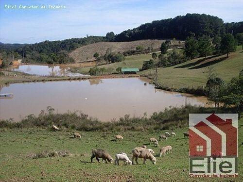 Fazenda Linda, Ideal Até para se Montar um Hotel Fazenda - Foto 5