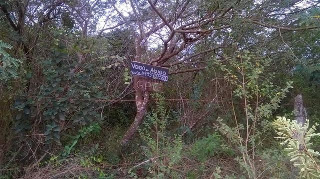 Vendo excelente terreno de 2.000m2 à 300m da Estrada de PIUM - Foto 4