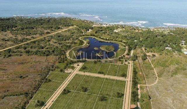 Terreno à venda em Taipu de fora, Maraú cod:57863649 - Foto 5