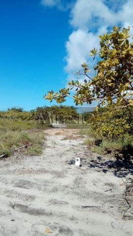 Terreno à venda em Taipu de fora, Maraú cod:57863649 - Foto 12
