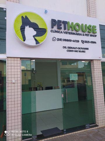 PetHouse - Primeiro banho com 50% de desconto!