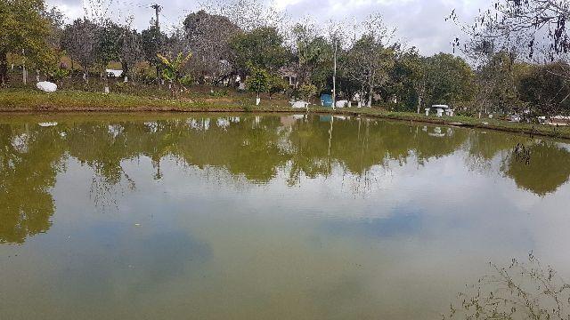 Itapetininga Região Fazenda 100 Alqueires - Foto 5