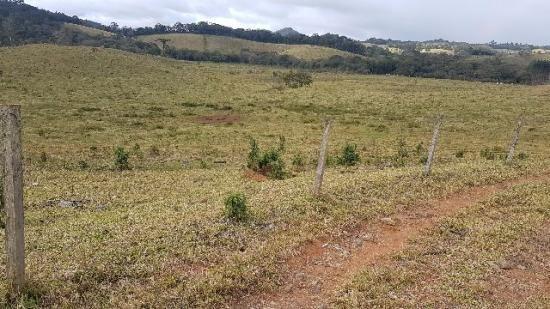 Itapetininga Região Fazenda 100 Alqueires - Foto 14