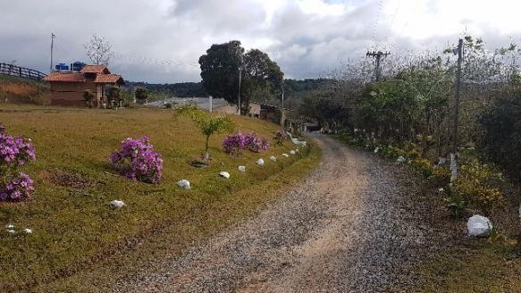 Itapetininga Região Fazenda 100 Alqueires - Foto 11