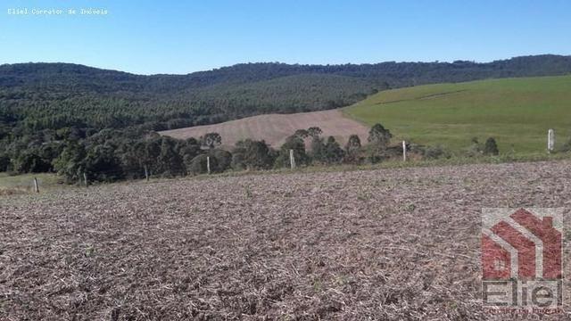 Fazenda para Plantio e Pastagem em Santa Terezinha - Foto 8