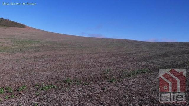 Fazenda para Plantio e Pastagem em Santa Terezinha - Foto 6