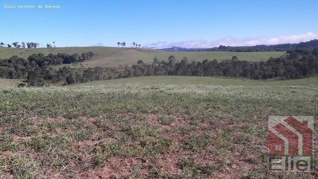 Fazenda para Plantio e Pastagem em Santa Terezinha - Foto 12