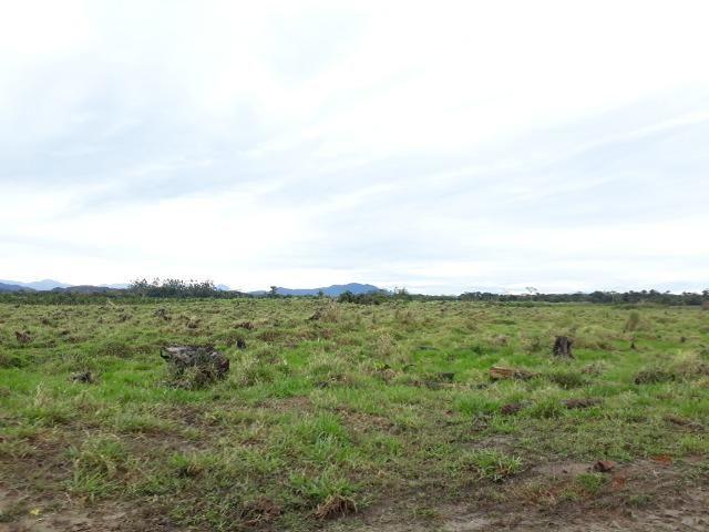 Fazenda Plana em Itapoá, Criação de Gado ou Plantio, Aceita Parte em Permuta - Foto 9