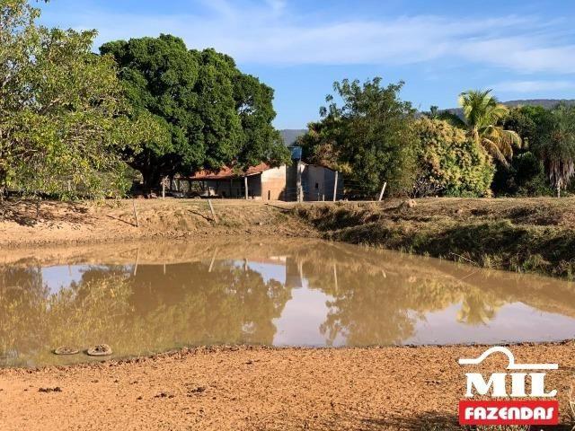 4 km de margens do Rio Araguaia. Fazenda 96 alqueires 464.64 Hectares - Aragarças-GO - Foto 13