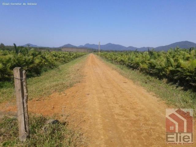 Fazenda Plana em Itapoá, Criação de Gado ou Plantio, Aceita Parte em Permuta - Foto 2