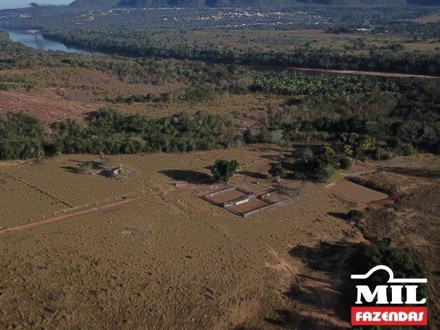 4 km de margens do Rio Araguaia. Fazenda 96 alqueires 464.64 Hectares - Aragarças-GO - Foto 18