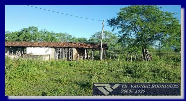 VR-Belíssima Fazenda 130ha com Estrutura, Localização Privilegiada, Valor Super Atrativo - Foto 4