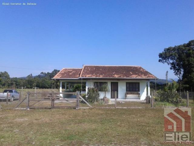 Fazenda Plana em Itapoá, Criação de Gado ou Plantio, Aceita Parte em Permuta - Foto 3