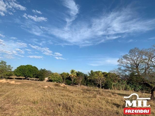 4 km de margens do Rio Araguaia. Fazenda 96 alqueires 464.64 Hectares - Aragarças-GO - Foto 16