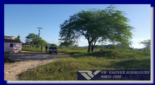 VR-Belíssima Fazenda 130ha com Estrutura, Localização Privilegiada, Valor Super Atrativo - Foto 19
