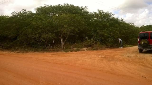 Vendo excelente terreno de 2.000m2 à 300m da Estrada de PIUM - Foto 3