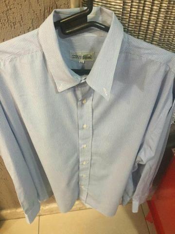 62b60b97cc78e Camisa social Lacoste original Nova R 65 - Roupas e calçados ...