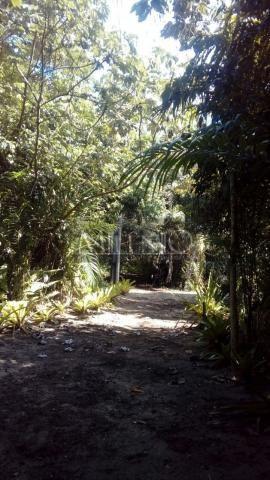 Terreno à venda em Taipu de fora, Maraú cod:57863649 - Foto 6
