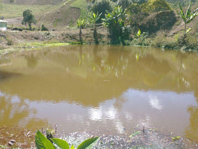 Sítio São Bento uraina 4 alqueires - Foto 4