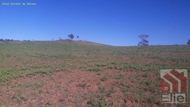 Fazenda para Plantio e Pastagem em Santa Terezinha - Foto 13