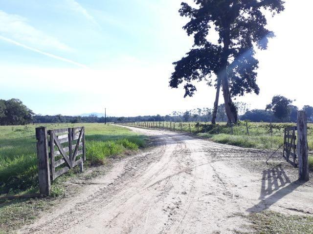 Fazenda Plana em Itapoá com Valor de Ocasião, Aceita parte em Permuta - Foto 13