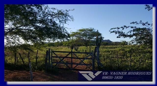 VR-Belíssima Fazenda 130ha com Estrutura, Localização Privilegiada, Valor Super Atrativo - Foto 8