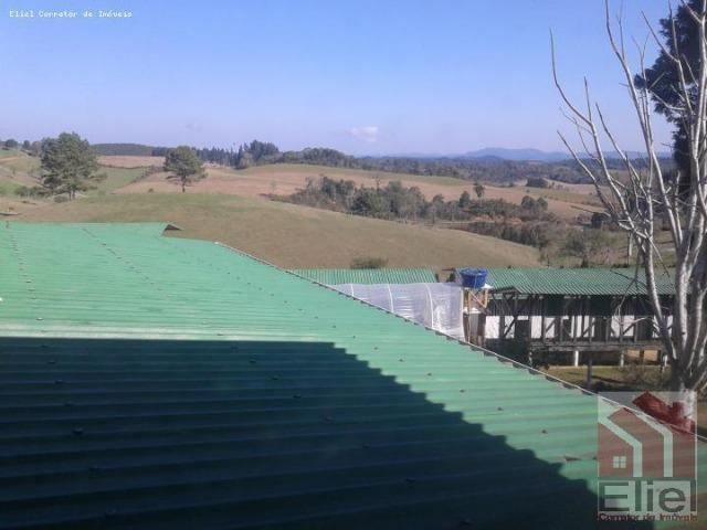 Fazenda Linda, Ideal Até para se Montar um Hotel Fazenda - Foto 9