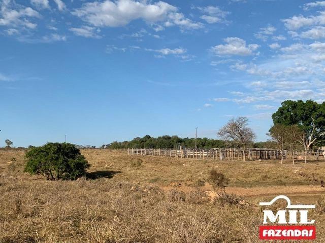 4 km de margens do Rio Araguaia. Fazenda 96 alqueires 464.64 Hectares - Aragarças-GO - Foto 7