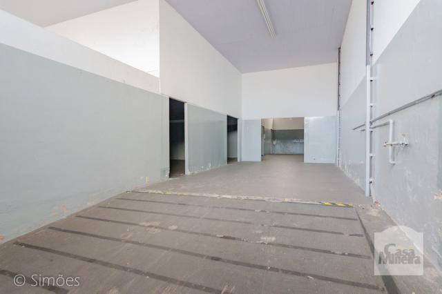 Galpão/depósito/armazém à venda em Padre eustáquio, Belo horizonte cod:256433 - Foto 3